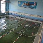 plavanie-13
